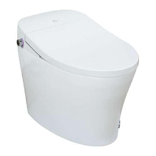 Samuel Mueller SM-5401-B Enterprise 1-Piece Elongated Smart Bidet Toilet in White
